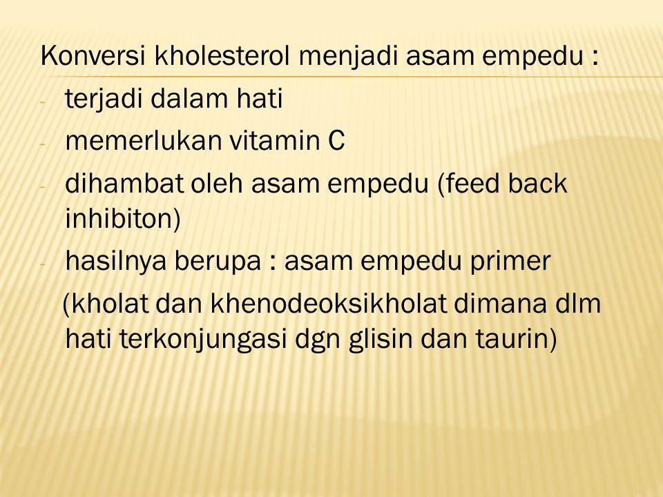 Konversi kholesterol menjadi asam empedu : - terjadi dalam hati - memerlukan vitamin C - dihambat oleh asam empedu (feed back inhibiton) - hasilnya be