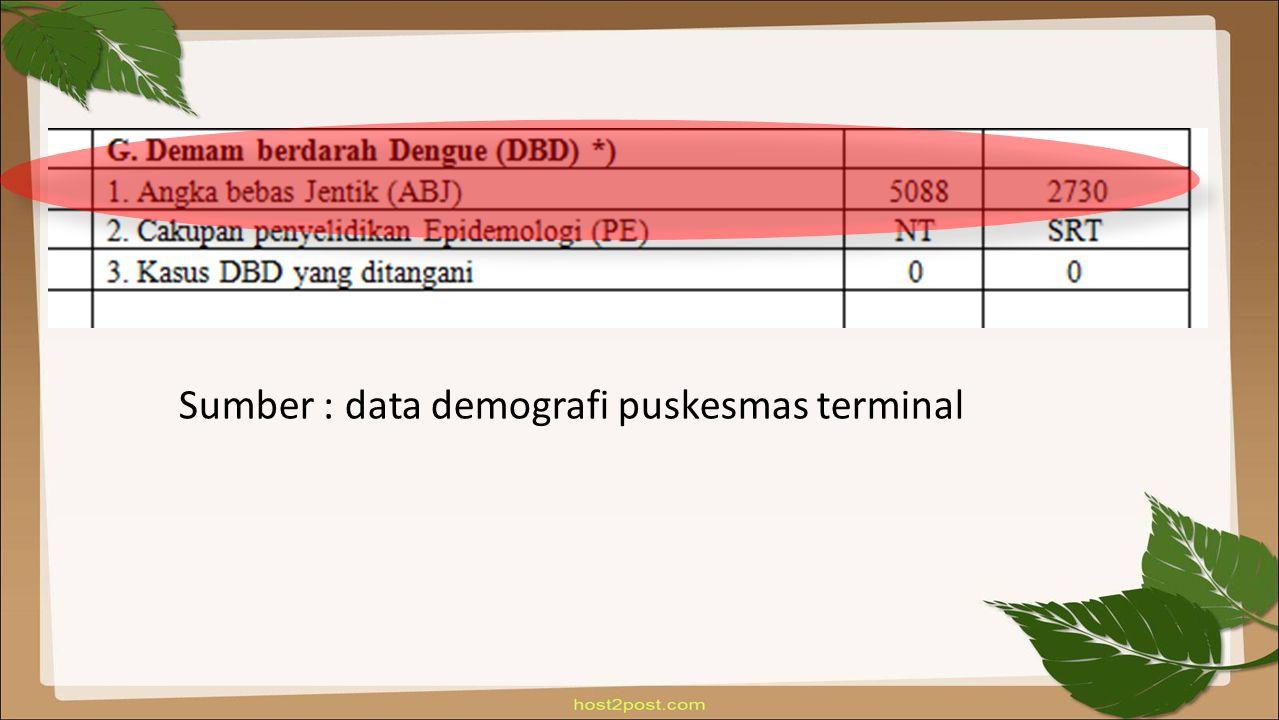 Sumber : data demografi puskesmas terminal