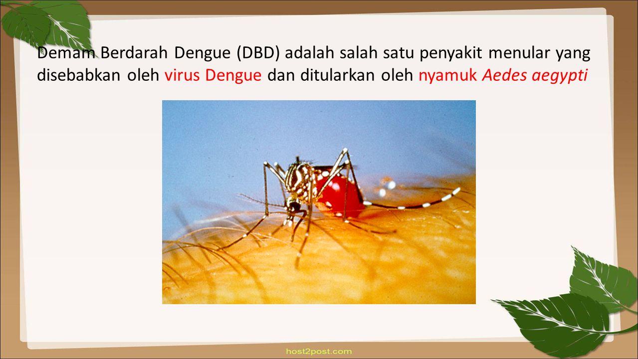 Demam Berdarah Dengue (DBD) adalah salah satu penyakit menular yang disebabkan oleh virus Dengue dan ditularkan oleh nyamuk Aedes aegypti