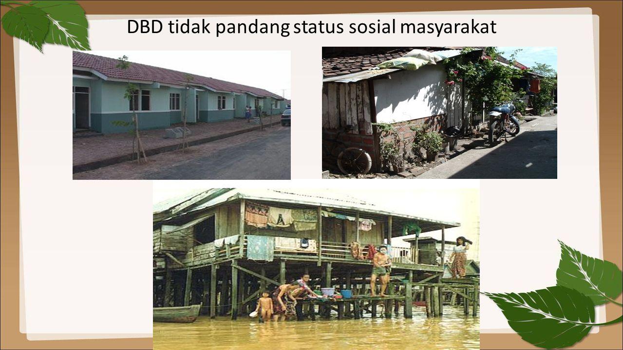 DBD tidak pandang status sosial masyarakat
