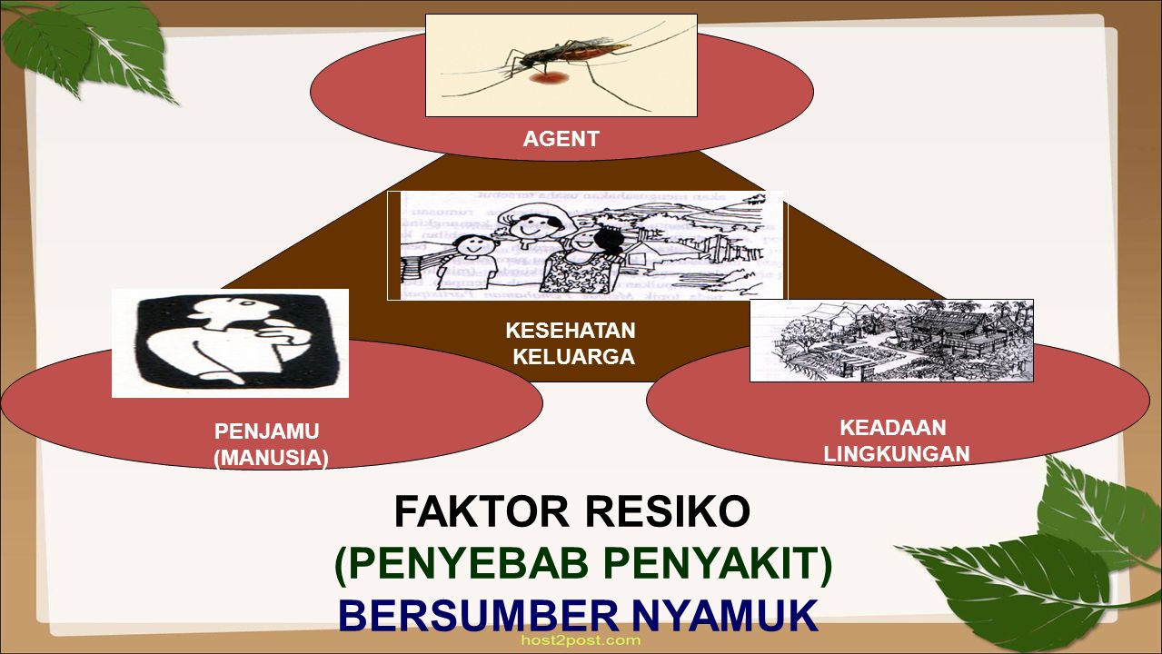KESEHATAN KELUARGA AGENT FAKTOR RESIKO (PENYEBAB PENYAKIT) BERSUMBER NYAMUK PENJAMU (MANUSIA) KEADAAN LINGKUNGAN