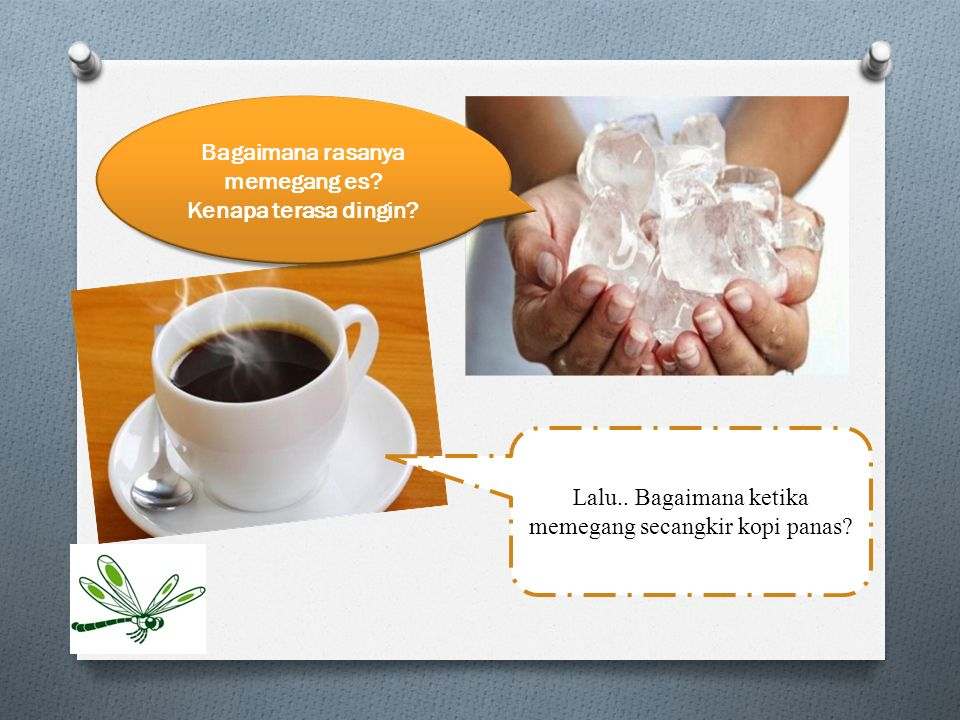 Bagaimana rasanya memegang es? Kenapa terasa dingin? Lalu.. Bagaimana ketika memegang secangkir kopi panas?