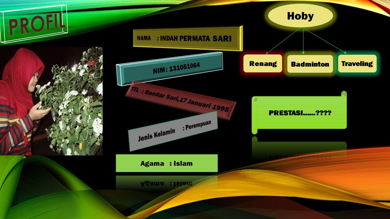 Hoby Renang Badminton Traveling
