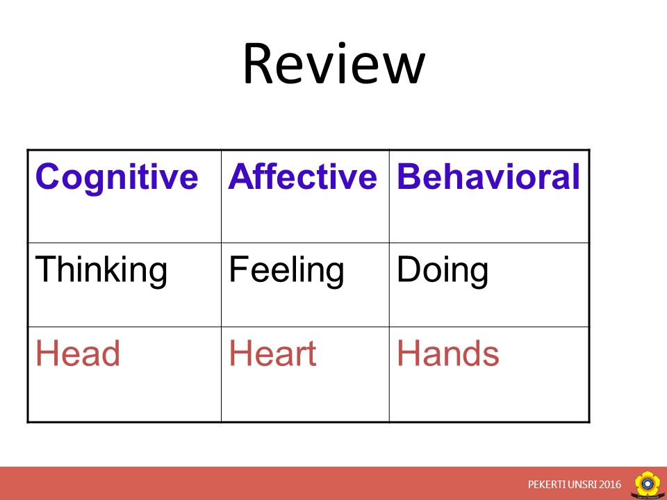 Review CognitiveAffectiveBehavioral ThinkingFeelingDoing HeadHeartHands PEKERTI UNSRI 2016