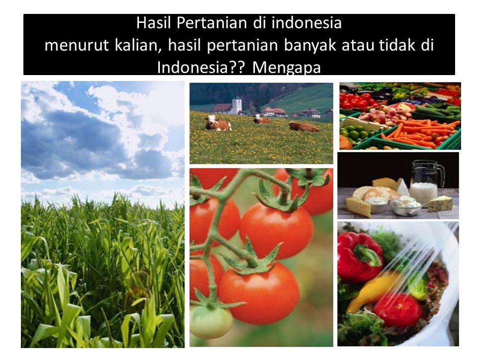 Hasil Pertanian di indonesia menurut kalian, hasil pertanian banyak atau tidak di Indonesia?? Mengapa