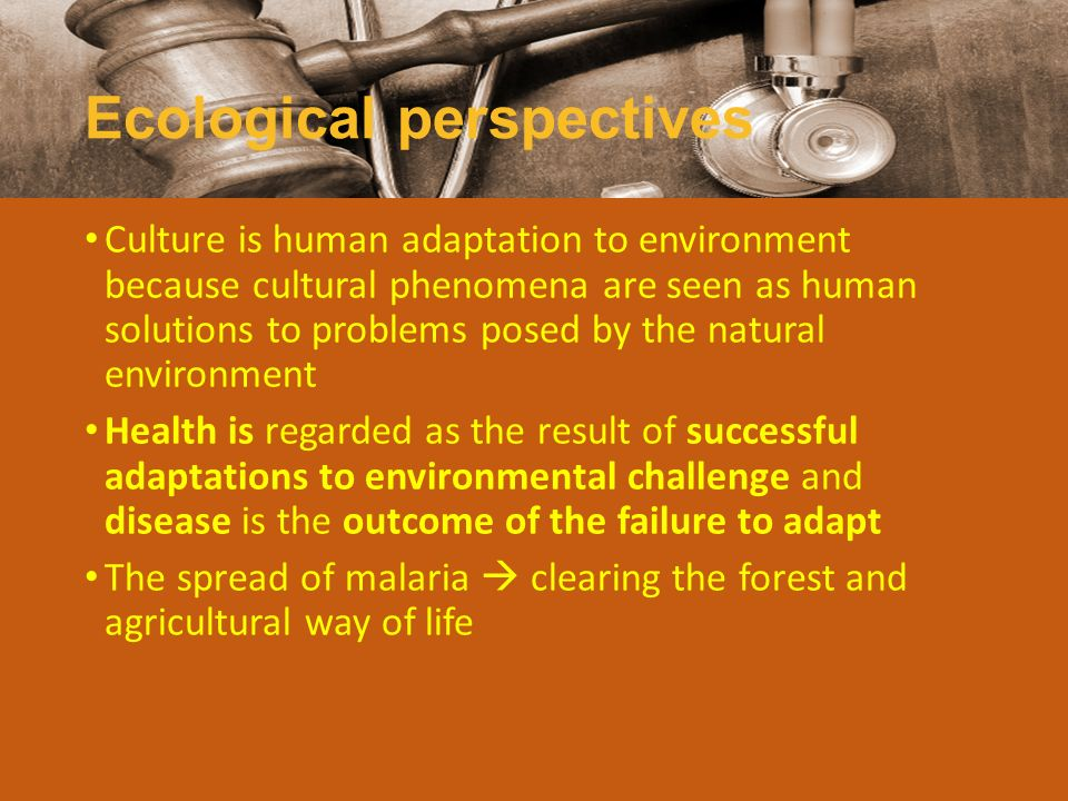 Ecological perspectives Culture is human adaptation to environment because cultural phenomena are seen as human solutions to problems posed by the nat