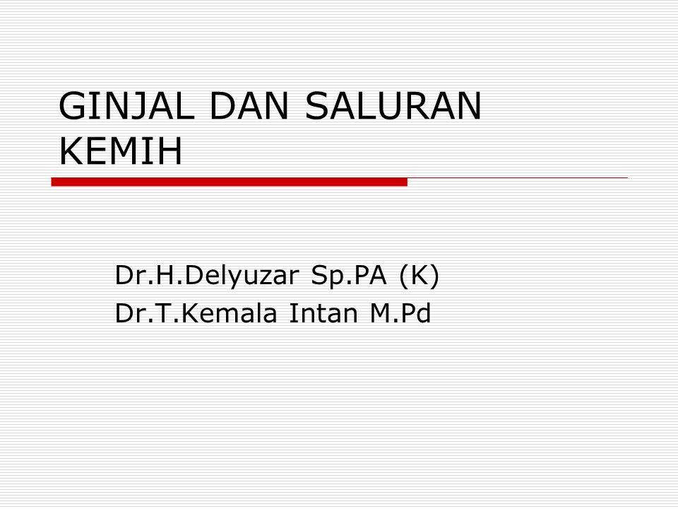 GINJAL DAN SALURAN KEMIH Dr.H.Delyuzar Sp.PA (K) Dr.T.Kemala Intan M.Pd