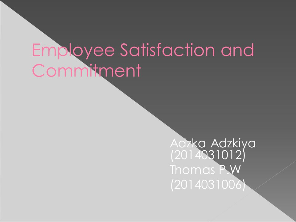 Employee Satisfaction and Commitment Adzka Adzkiya (2014031012) Thomas P.W (2014031006)