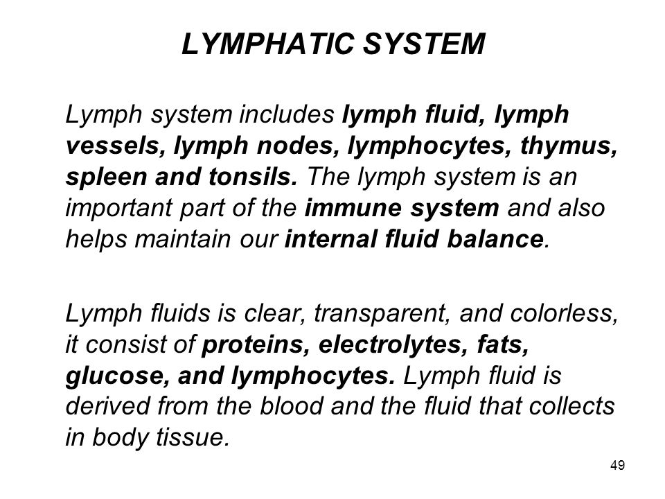 49 LYMPHATIC SYSTEM Lymph system includes lymph fluid, lymph vessels, lymph nodes, lymphocytes, thymus, spleen and tonsils.