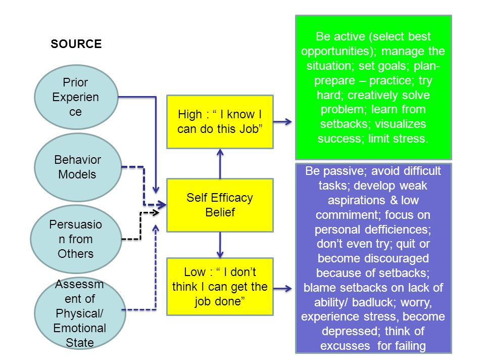 Prior Experien ce Behavior Models Persuasio n from Others Assessm ent of Physical/ Emotional State High : I know I can do this Job Self Efficacy Belief Low : I don't think I can get the job done Be active (select best opportunities); manage the situation; set goals; plan- prepare – practice; try hard; creatively solve problem; learn from setbacks; visualizes success; limit stress.