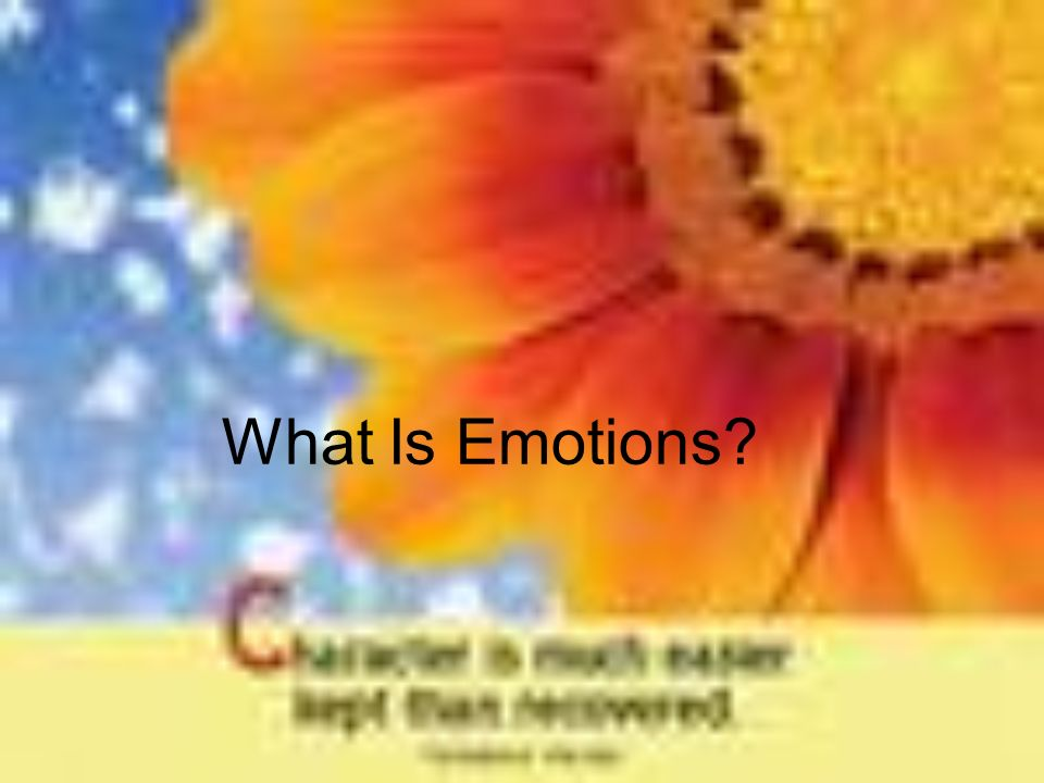 What Is Emotions