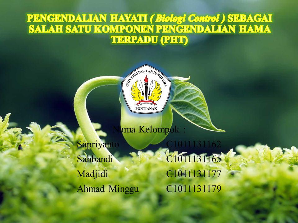 Nama Kelompok : Sapriyanto C1011131162 Sahbandi C1011131165 Madjidi C1011131177 Ahmad Minggu C1011131179