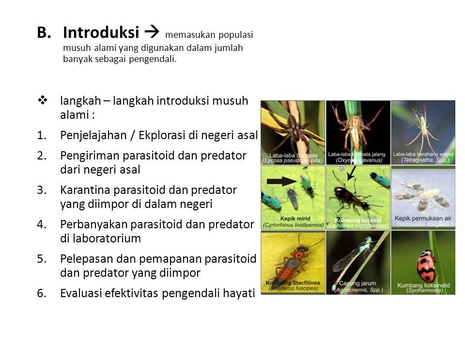 B.Introduksi  memasukan populasi musuh alami yang digunakan dalam jumlah banyak sebagai pengendali.  langkah – langkah introduksi musuh alami : 1.Pe