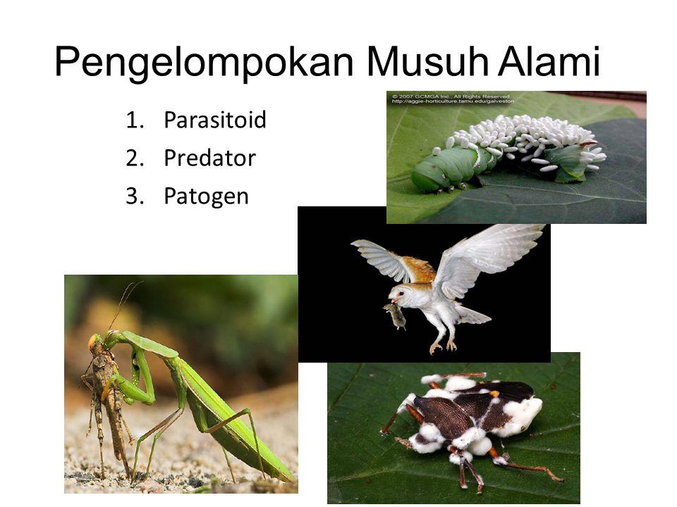 Pengelompokan Musuh Alami 1.Parasitoid 2.Predator 3.Patogen