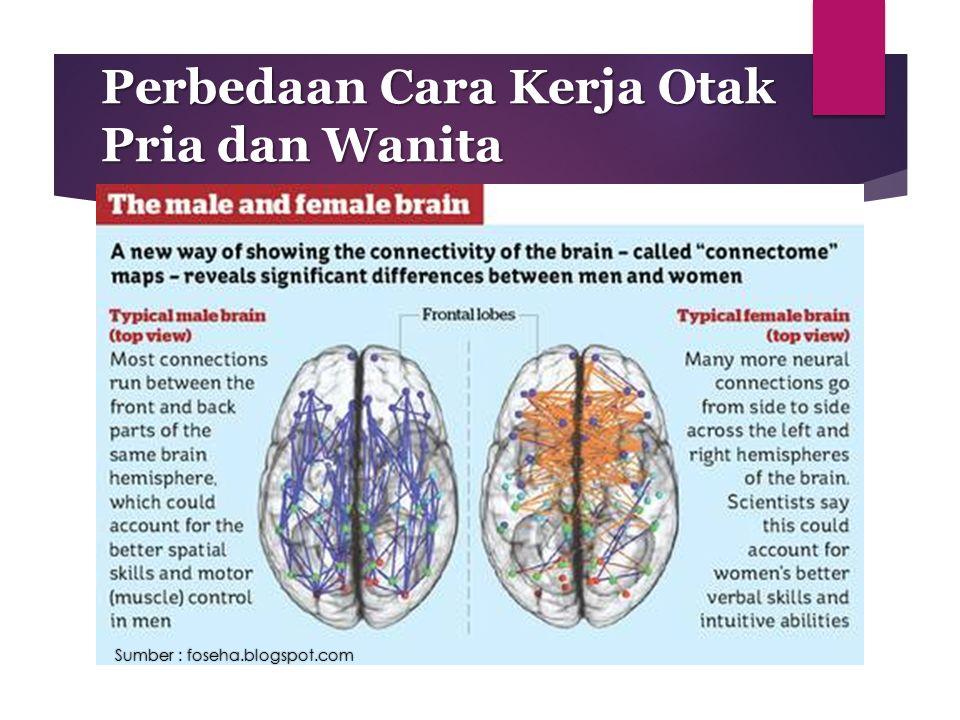 Perbedaan Cara Kerja Otak Pria dan Wanita Sumber : foseha.blogspot.com