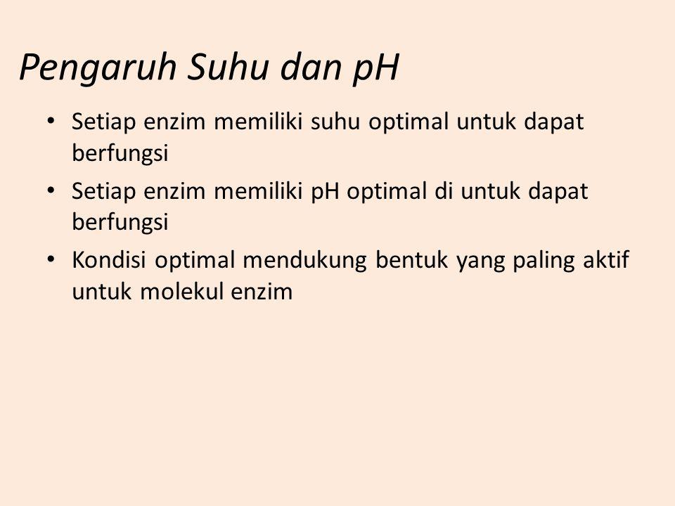 Pengaruh Suhu dan pH Setiap enzim memiliki suhu optimal untuk dapat berfungsi Setiap enzim memiliki pH optimal di untuk dapat berfungsi Kondisi optima