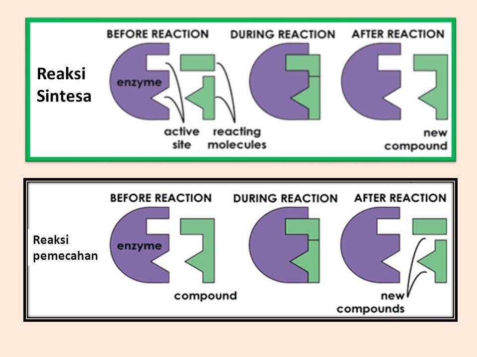 Reaksi Sintesa Reaksi pemecahan