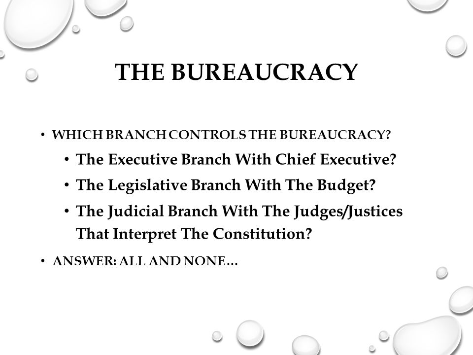 THE BUREAUCRACY WHICH BRANCH CONTROLS THE BUREAUCRACY? The Executive Branch With Chief Executive? The Legislative Branch With The Budget? The Judicial