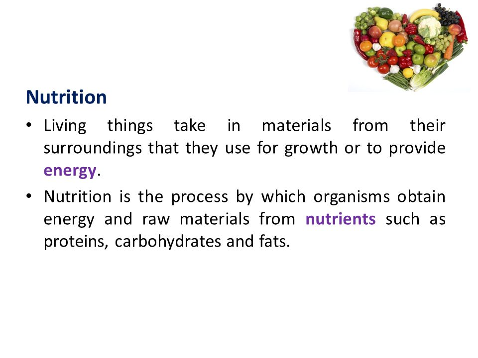 Nutrition Living things take in materials from their surroundings that they use for growth or to provide energy.