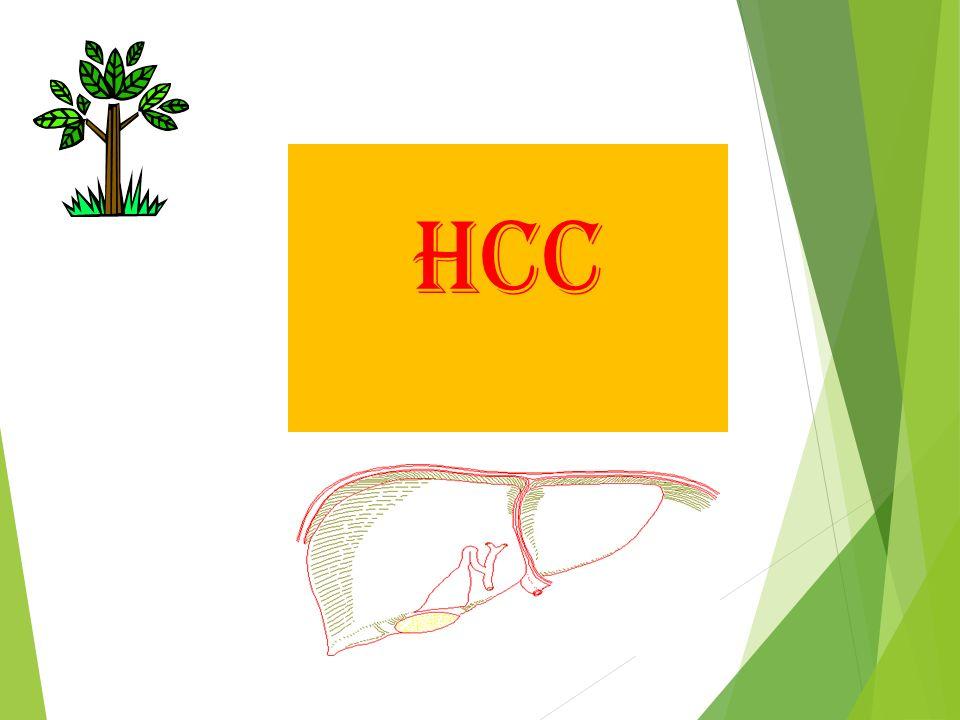 Sampai saat ini tes yang mampu untuk surveilance HCC adalah Serum αfetoprotein dan hepatic ultrasonografi.