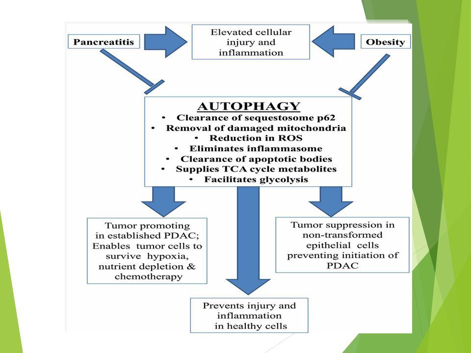 CA 19-9 - Marker ut karsinoma colorectal dan pankreas - Disintesis : 1.
