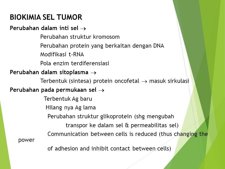 BIOKIMIA SEL TUMOR Perubahan dalam inti sel  Perubahan struktur kromosom Perubahan protein yang berkaitan dengan DNA Modifikasi t-RNA Pola enzim terd