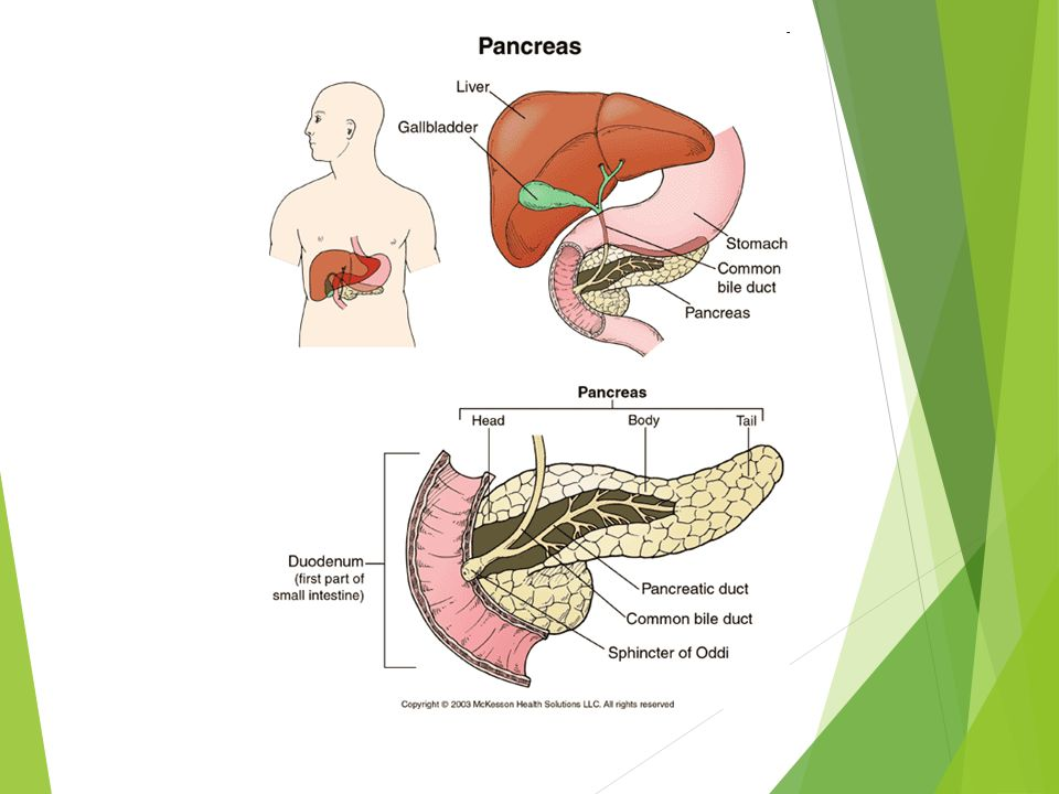 Pathology of pancreatic adenocarcinoma and its precursor lesions.