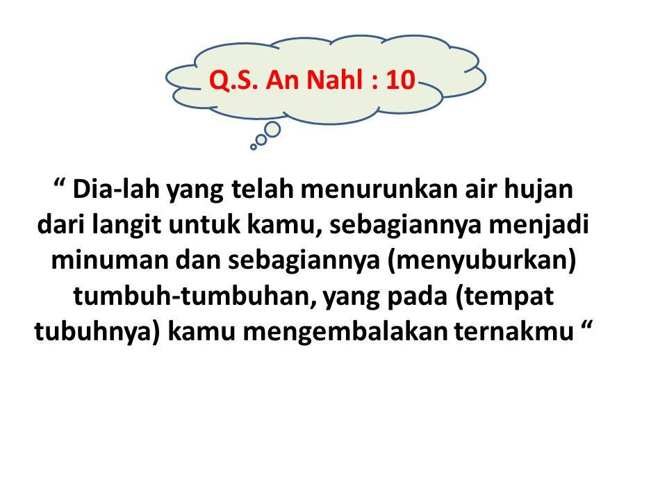 """Q.S. An Nahl : 10 """" Dia-lah yang telah menurunkan air hujan dari langit untuk kamu, sebagiannya menjadi minuman dan sebagiannya (menyuburkan) tumbuh-t"""