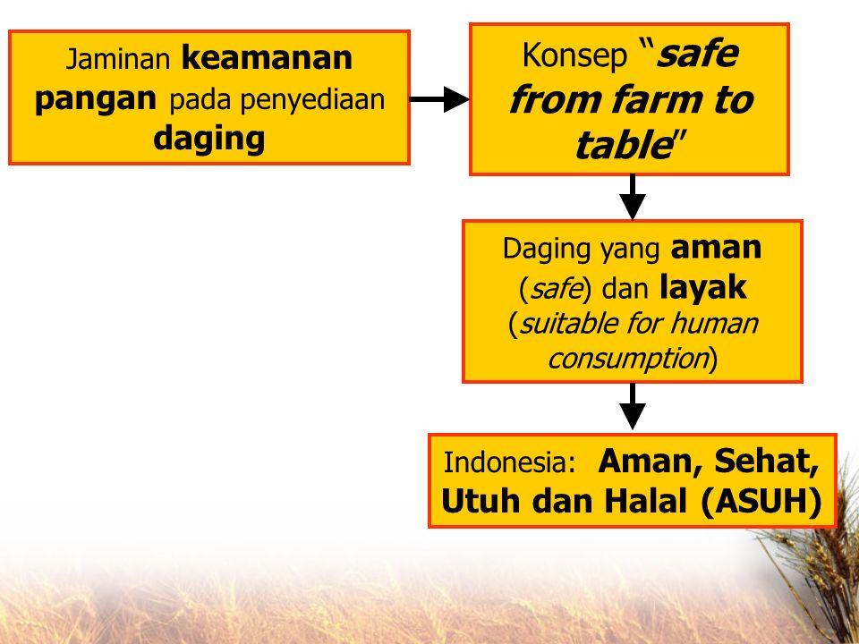 Jaminan keamanan pangan pada penyediaan daging Konsep safe from farm to table Daging yang aman (safe) dan layak (suitable for human consumption) Indonesia: Aman, Sehat, Utuh dan Halal (ASUH)