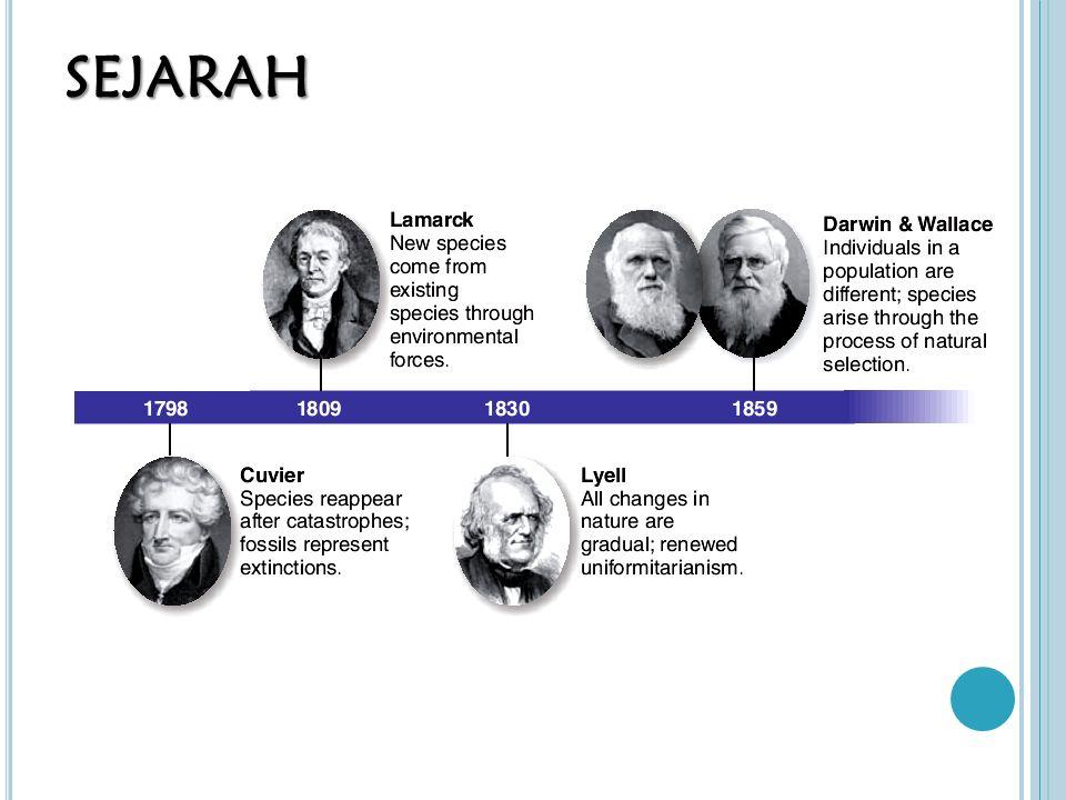 PERKEMBANGAN TEORI EVOLUSI Teori Evolusi yang dikemukakan Darwin kemudian berkembang sejalan dengan perkembangan ilmu pengetahuan untuk mengungkapkan bukti-bukti teori evolusi Bidang kajian terkait perkembangan Teori Evolusi: palaentologi (catatan fosil), geologi (umur bumi), genetika (konsep penurunan karakter), anatomi hewan (kajian komparatif dengan konsep homolog dan analog), biologi molekular (hubungan kekerabatan dilihat dari molekul DNA)