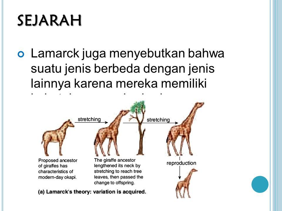 PERDEBATAN TEORI EVOLUSI Argumen teori penciptaan: 1) Evolusi hanya teori, bukan fakta 2) Ketiadaan fosil perantara: tidak pernah ada yang melihat bagaimana perubahan sirip menjadi kaki 3) Perancangan cerdas: organ dari makhluk hidup terlalu kompleks untuk sebuah proses acak yang menghasilkan organ tersebut