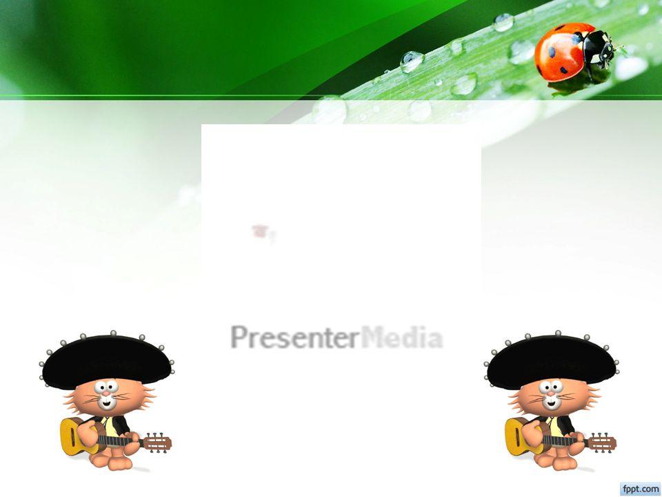 Operator P4TK Download kelas dan peserta Operator P4TK Proses kegiatan Moda tatap muka Operator P4TK Upload hasil kegiatan