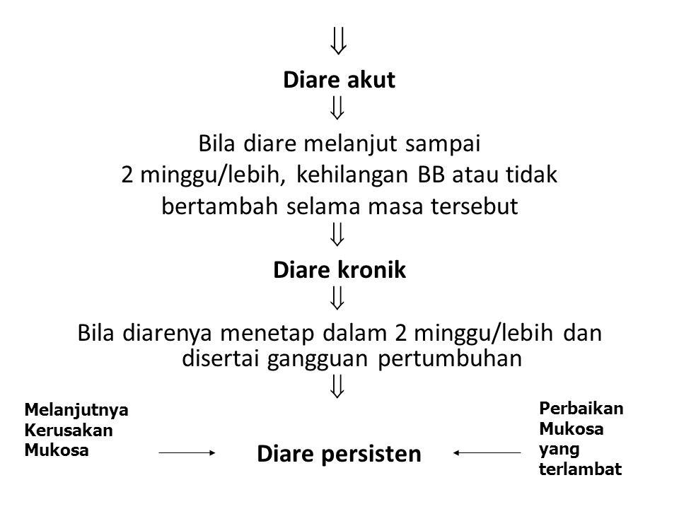 Diare akut  Bila diare melanjut sampai 2 minggu/lebih, kehilangan BB atau tidak bertambah selama masa tersebut  Diare kronik  Bila diarenya menetap