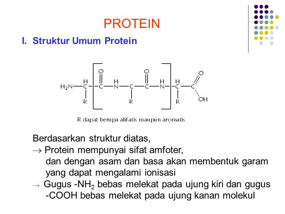 PROTEIN I.Struktur Umum Protein Berdasarkan struktur diatas,  Protein mempunyai sifat amfoter, dan dengan asam dan basa akan membentuk garam yang dap