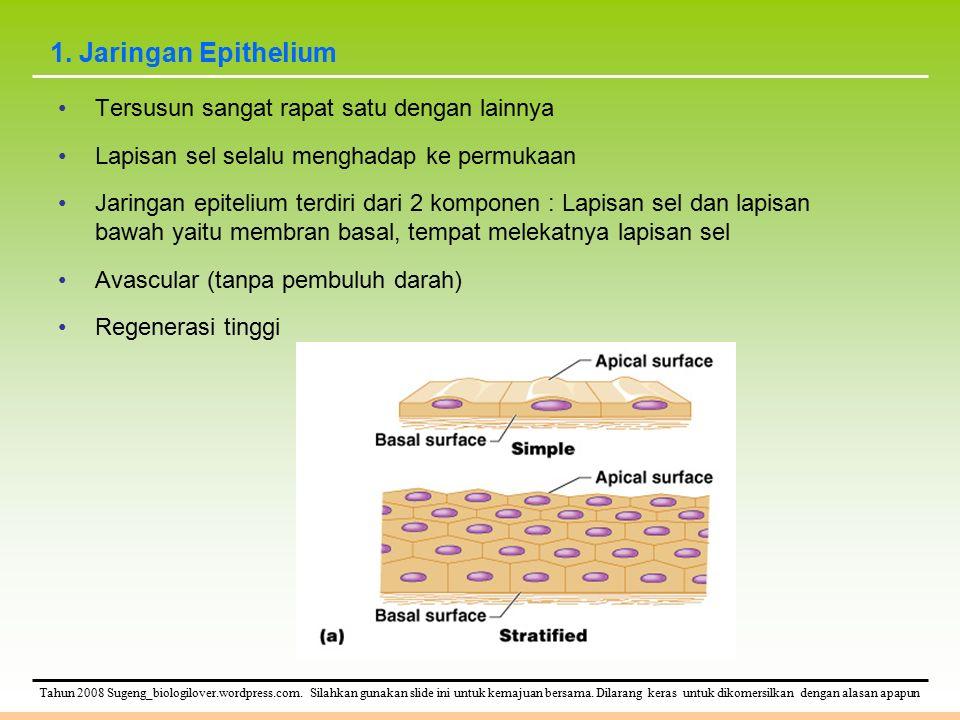 Tahun 2008 Sugeng_biologilover.wordpress.com.Silahkan gunakan slide ini untuk kemajuan bersama.