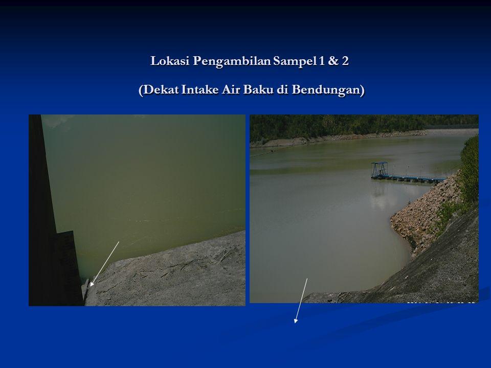 Saran - Saran Reduksi Dampak penurunan Kualitas air baku pasca longsor Reduksi Dampak penurunan Kualitas air baku pasca longsor Untuk mengurangi dampak penurunan kualitas air yang masuk pada IPA V Somba Opu sebaiknya mempertimbangkan pengembangan yang telah direncanakan sebelumnya yaitu pembangunan IPA VI hal ini berkaitan dengan makin terbatasnya kapasitas IPA V Somba Opu dan meningkatnya biaya operasional pada pemakaian Koagulan.