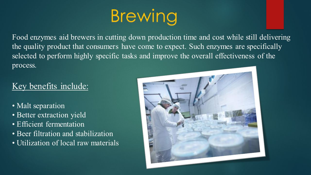 Brewing Food enzymes aid brewers in cutting down production time and cost while still delivering the quality product that consumers have come to expec