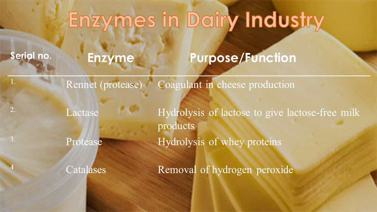 Serial no. Enzyme Purpose/Function 1. Rennet (protease)Coagulant in cheese production 2. LactaseHydrolysis of lactose to give lactose-free milk produc