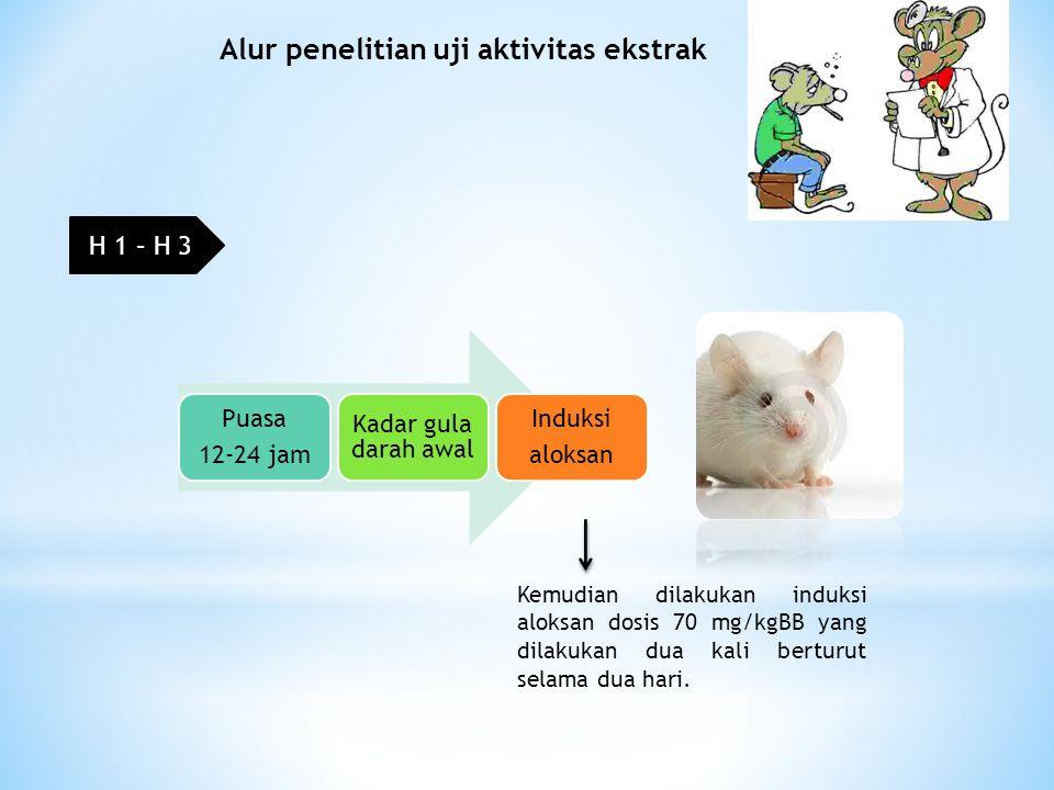 Alur penelitian uji aktivitas ekstrak Puasa 12-24 jam Kadar gula darah awal Induksi aloksan Kemudian dilakukan induksi aloksan dosis 70 mg/kgBB yang dilakukan dua kali berturut selama dua hari.