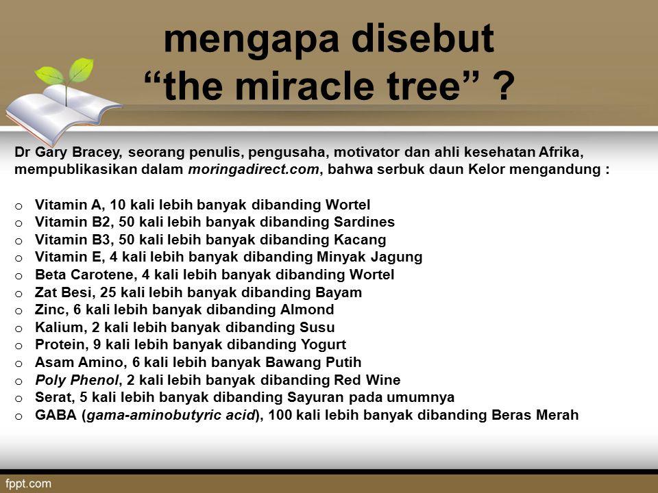 mengapa disebut the miracle tree .