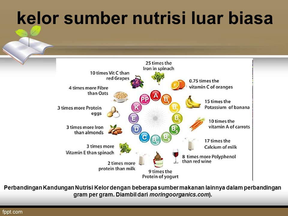 Kandungan nutrisi Polong kelor, Daun segar, dan serbuk daun Kelor (Hakim Bey, All Things Moringa, 2010)