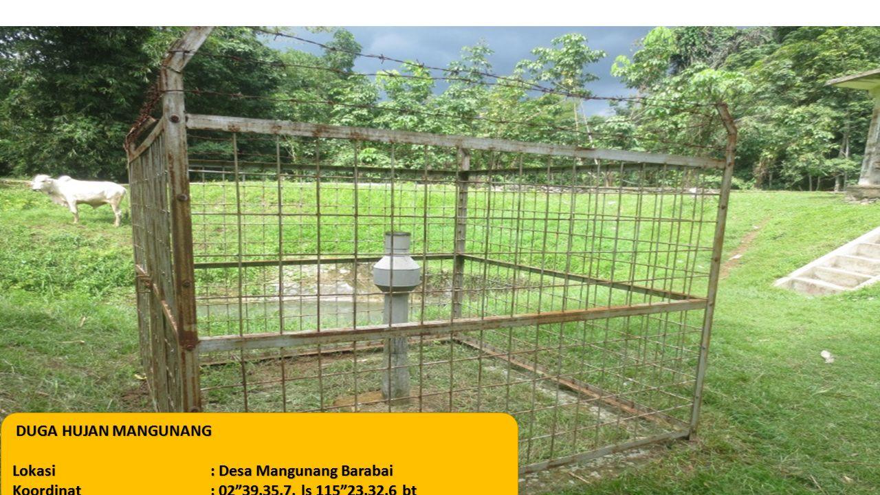 "DUGA HUJAN MANGUNANG Lokasi: Desa Mangunang Barabai Koordinat: 02""39.35.7. ls 115""23.32.6 bt"