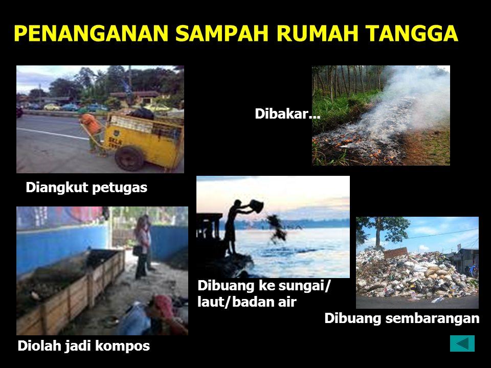 PENANGANAN SAMPAH RUMAH TANGGA Diangkut petugas Dibakar... Dibuang ke sungai/ laut/badan air Dibuang sembarangan Diolah jadi kompos