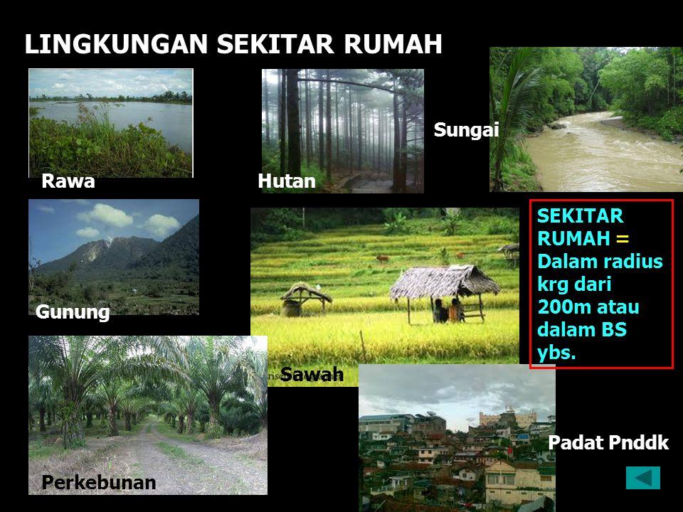 LINGKUNGAN SEKITAR RUMAH Sungai Hutan Sawah Perkebunan Gunung Rawa Padat Pnddk SEKITAR RUMAH = Dalam radius krg dari 200m atau dalam BS ybs.