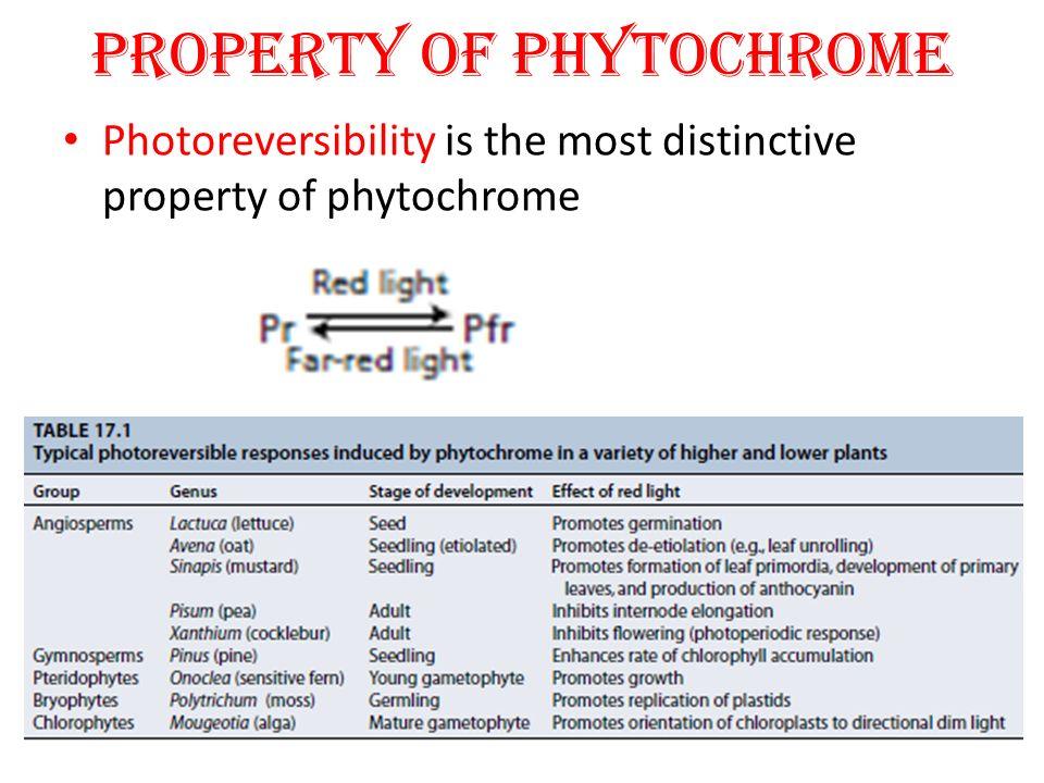 B.Circadian Rhythms Circadian rhythms are the rhythmic changes in metabolic processes in plant e.g.