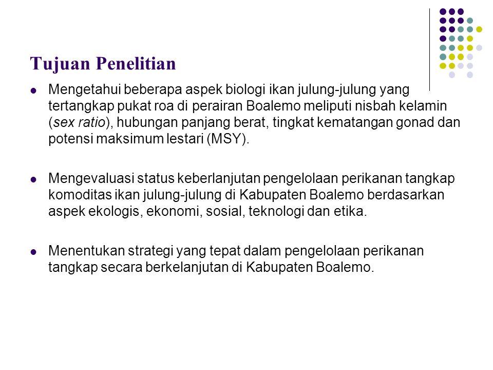 Kajian Pustaka Deskripsi biologi ikan julung-julung Ikan julung-julung telah banyak dikenal dan dikonsumsi bukan hanya oleh mayarakat Indonesia saja tetapi oleh sebagian masyarakat dunia, salah satunya Australia.