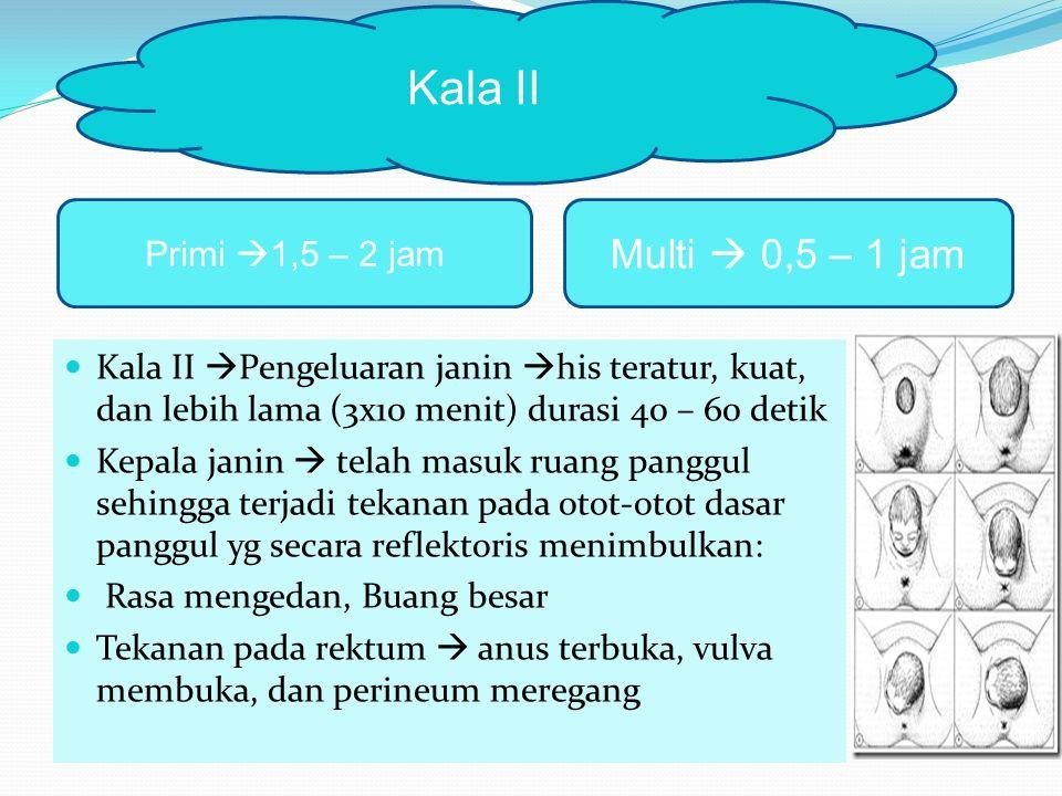 Kala II  Pengeluaran janin  his teratur, kuat, dan lebih lama (3x10 menit) durasi 40 – 60 detik Kepala janin  telah masuk ruang panggul sehingga terjadi tekanan pada otot-otot dasar panggul yg secara reflektoris menimbulkan: Rasa mengedan, Buang besar Tekanan pada rektum  anus terbuka, vulva membuka, dan perineum meregang Kala II Primi  1,5 – 2 jam Multi  0,5 – 1 jam