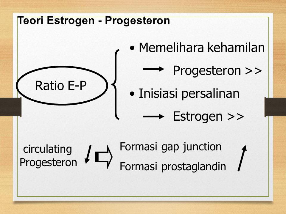 Teori Estrogen - Progesteron Ratio E-P Memelihara kehamilan Progesteron >> Inisiasi persalinan Estrogen >> circulating Progesteron Formasi gap junctio