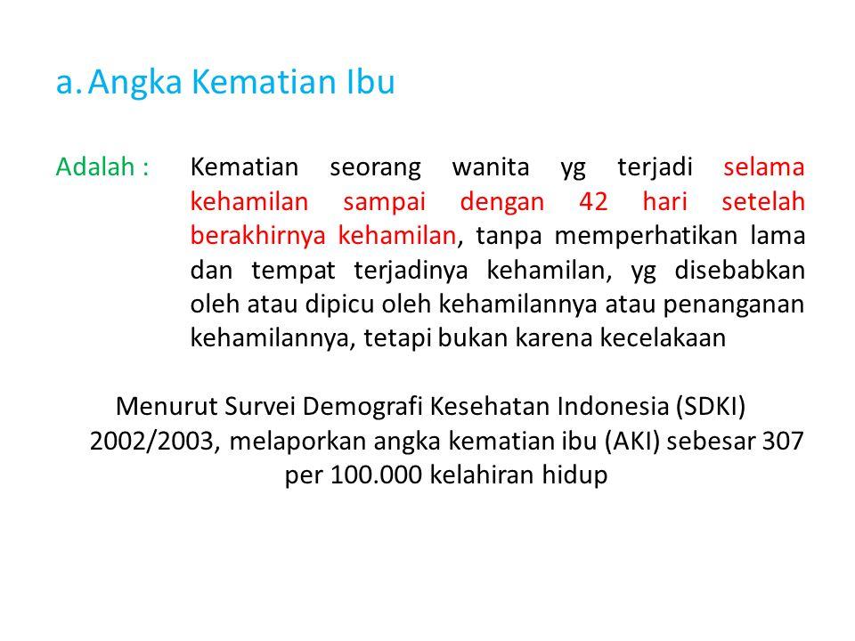 a.Angka Kematian Ibu Adalah :Kematian seorang wanita yg terjadi selama kehamilan sampai dengan 42 hari setelah berakhirnya kehamilan, tanpa memperhatikan lama dan tempat terjadinya kehamilan, yg disebabkan oleh atau dipicu oleh kehamilannya atau penanganan kehamilannya, tetapi bukan karena kecelakaan Menurut Survei Demografi Kesehatan Indonesia (SDKI) 2002/2003, melaporkan angka kematian ibu (AKI) sebesar 307 per 100.000 kelahiran hidup