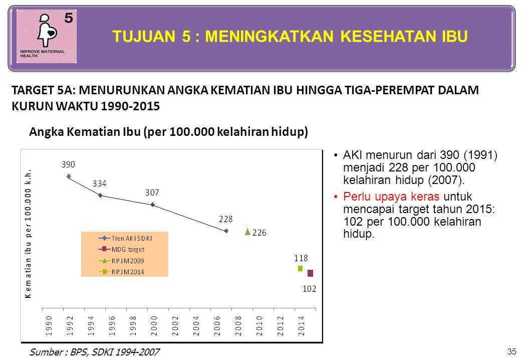 35 AKI menurun dari 390 (1991) menjadi 228 per 100.000 kelahiran hidup (2007). Perlu upaya keras untuk mencapai target tahun 2015: 102 per 100.000 kel